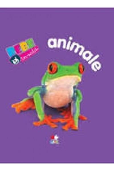 Animale. Bebe învață