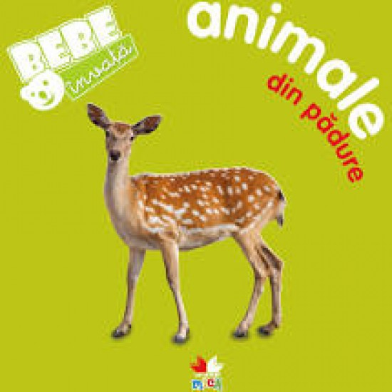Bebe învață: Animale din pădure
