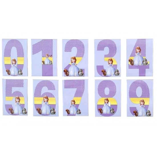 Set cifre magnetice mov princess Sofia